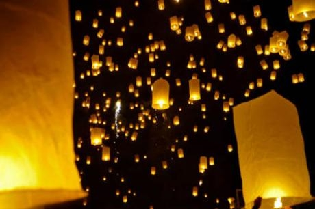Chinese Lanterns Cause Unnecessary Suffering to Wildlife & Livestock – Tuesday 02 July 2013
