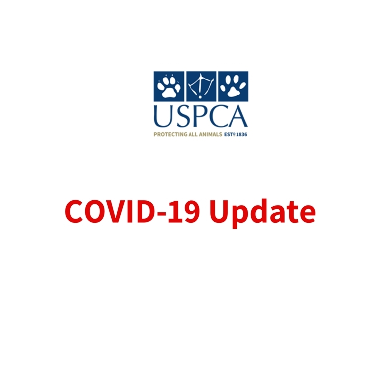 Covid 19 – Latest Update