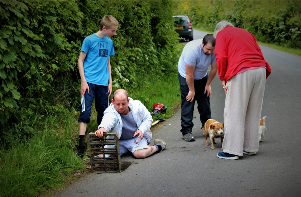 Dog was rescued after being stuck in a storm drain for two hours.