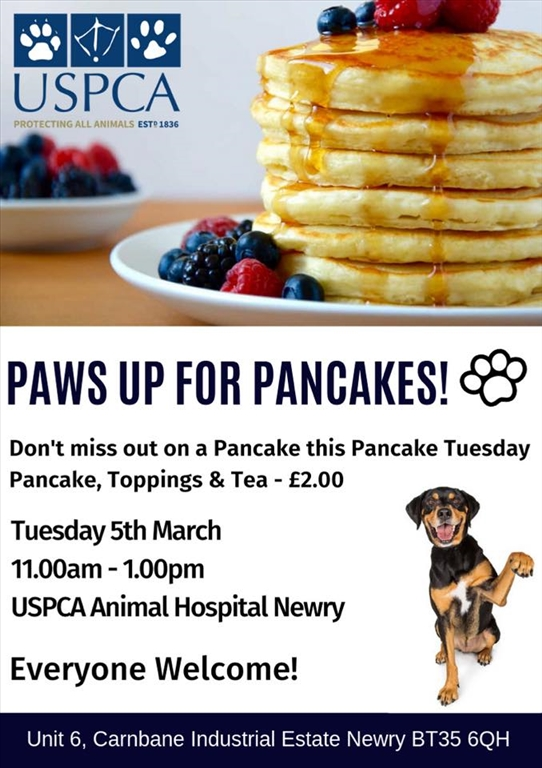 paws-up-for-pancakes-poster